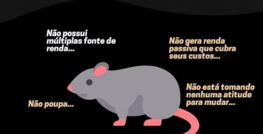 Corrida dos ratos